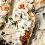 creamy chicken marsala topped with mushrooms.